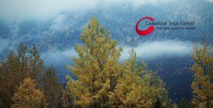 Canadian Visa Expert: Canada Forest